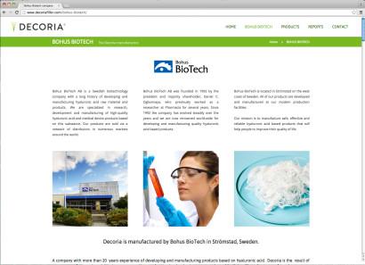 diseno-web-decoria-4.jpg